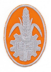 Fordson logo (1)  60x85mm oranje grijs